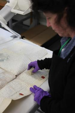 Pembrokeshire Archives - Conservation Work